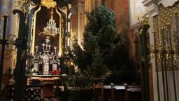 Boże Narodzenie 2014. Choinka w kaplicy Najśw. Sakramentu.